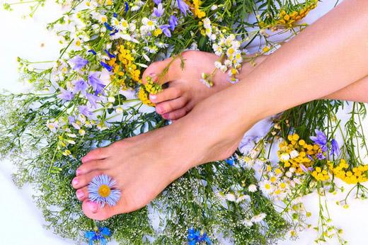 травы для ухода за ногами